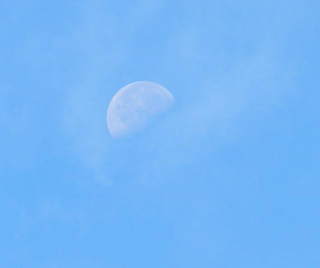 skywatchDSCN2243