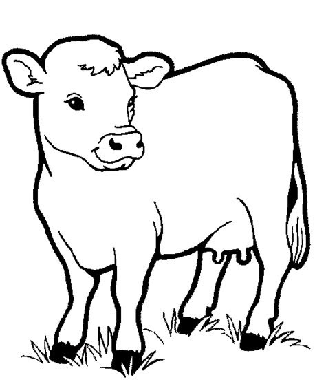 farm animal coloring pages  coloring pages
