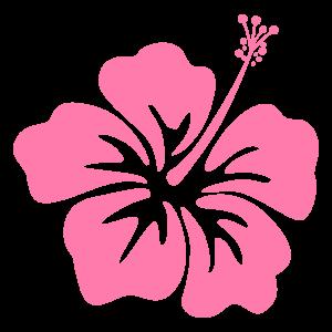 ハイビスカスの花5 花植物イラスト Flode Illustration フロデ