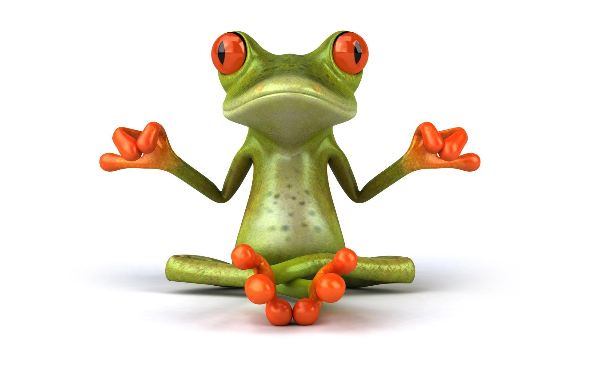 Uważność i spokój żabki
