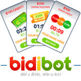 bidibot-160.jpg