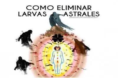 larvas astrales fotos