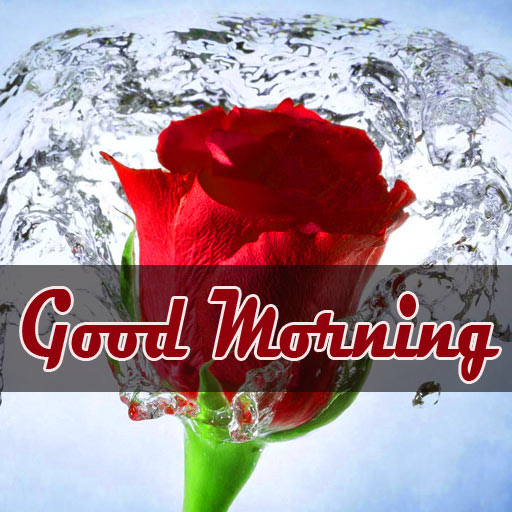 Good Morning Photo Wallpaper Free For Love Couple