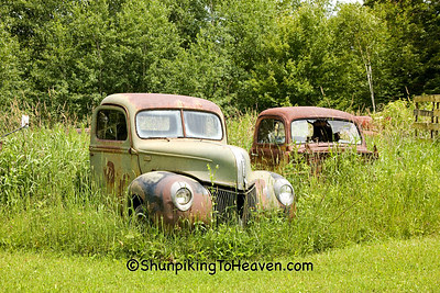 Rusty Old Ford Trucks, Jackson County, Wisconsin