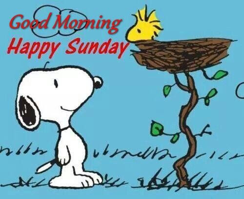 Good Morning Happy Sunday Snoopy Quote Pictures Photos And Images