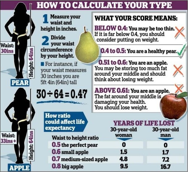 how to calculate body fat percentage formula