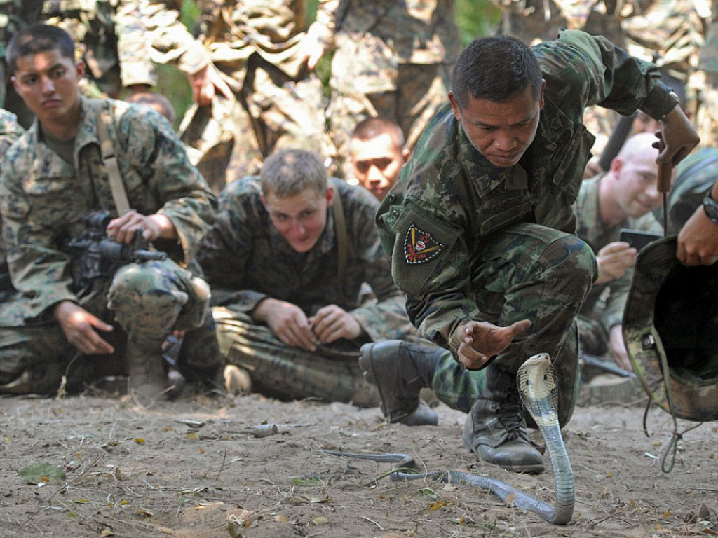 Cobra Gold 2013 - Militares sobrevivem com sangue de cobra na selva tailandesa 04