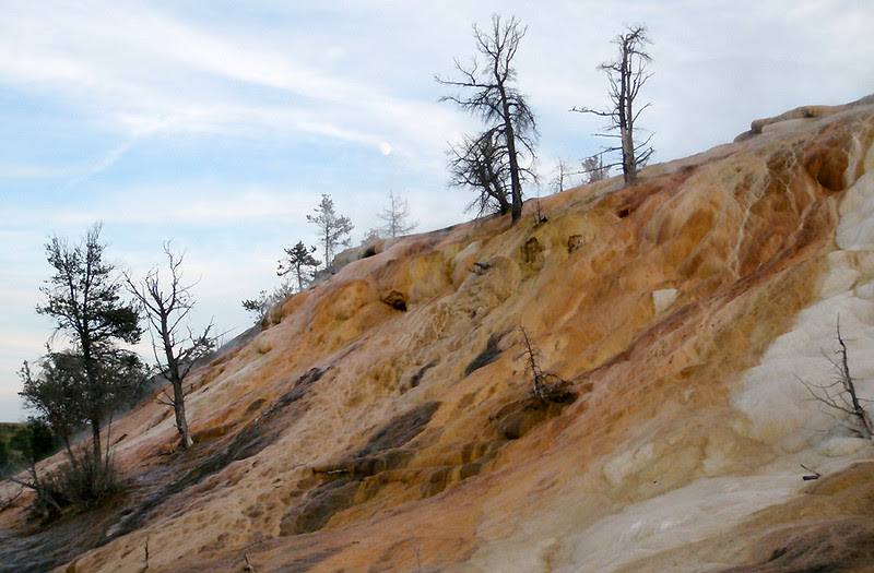 Mammoth Hot Springs Terraces, Yellowstone