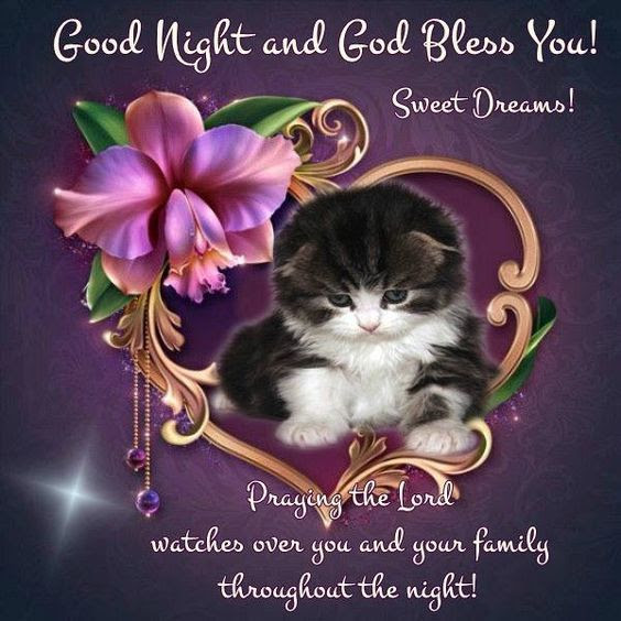 Good Night And God Bless You Sweet Dreams Pictures Photos And