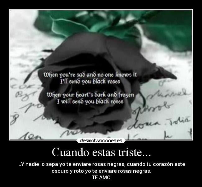 Best Imagen De Rosas Con Frases Tristes Image Collection
