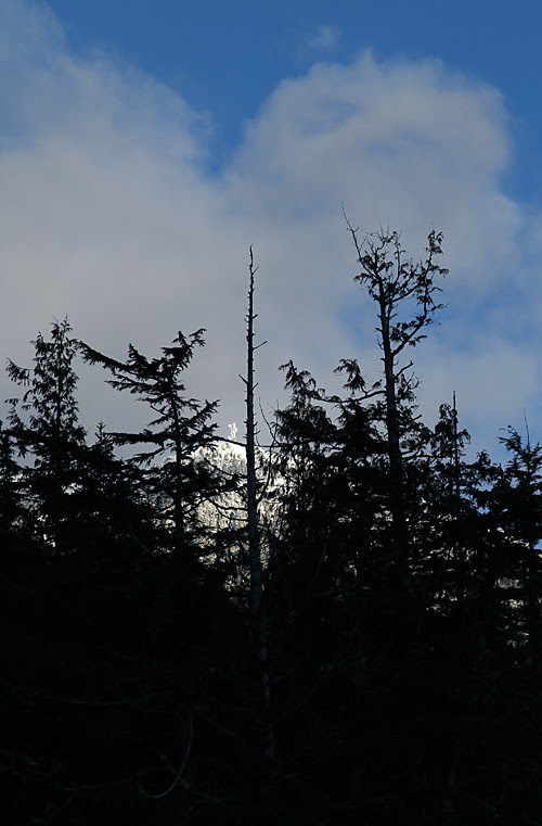 Kasaan Mountain, Kasaan, Alaska
