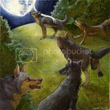 wolf,wolves,wolfs,canine,animals,cute,happy,illustration,watercolor,colored pencil,forest,woods,art,drawing,painting,luna,moon,moonlight,full moon,pagan,deity
