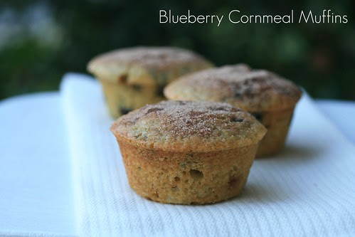 Blueberry Cornmeal Muffins - Williams Sonoma