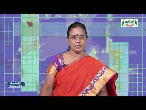 11th Tamil அரங்கவியல்  நவீன நாடக வரலாறு  இயல் 3  Kalvi TV