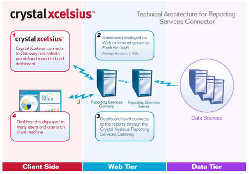 SQL Server y Xcelsius