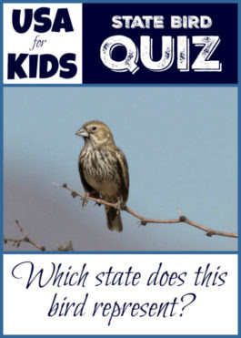 USA Facts for Kids Quizzes: USA State Birds Quiz