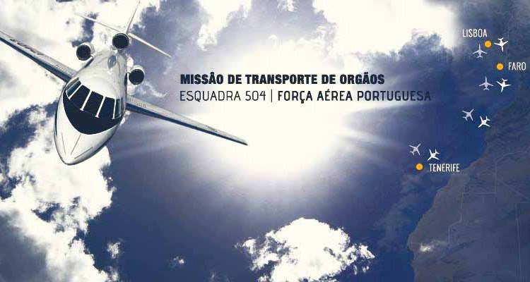 FAP Recolha_orgaos_Tenerife 900px