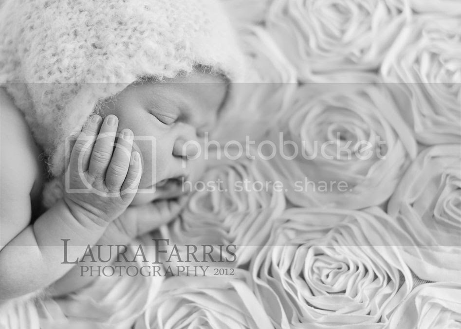 boise area newborn baby photographers