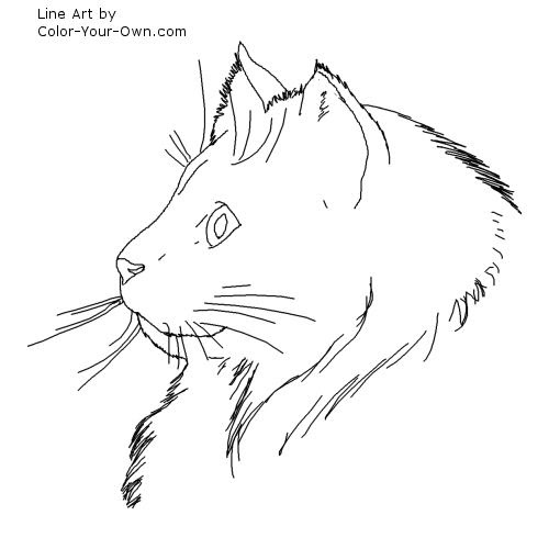 Person With Cat Head Coloring Pages Coloring Pages