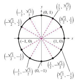 1000+ images about PreCalculus on Pinterest | Hot dogs, Circles ...