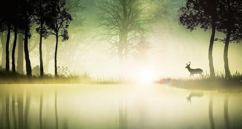 http://larchedegloire.com/wp-content/uploads/2015/04/Daim-dans-le-brouillard-940x500.jpg