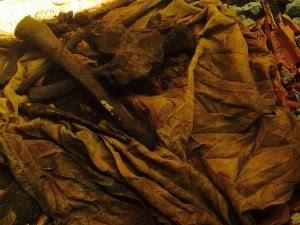 Ossada humana é encontrada enterrada dentro de fossa em Campo Grande (Foto: Divulgação/Polícia Civil)