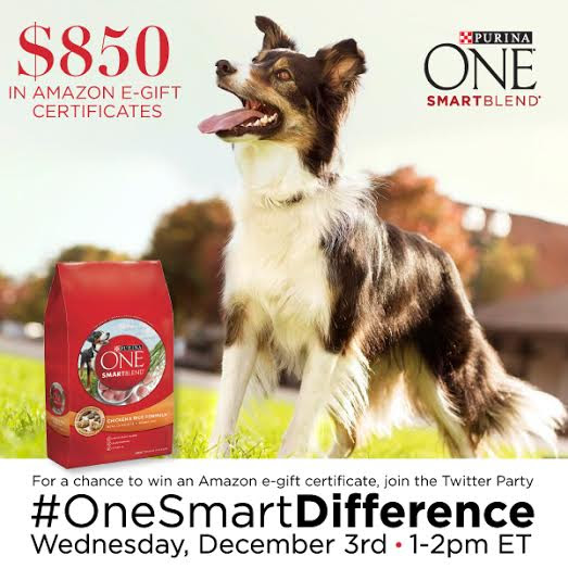 #OneSmartDifference-Twitter-Party-Wednesday-December-3rd-1pmET-ad-cbias