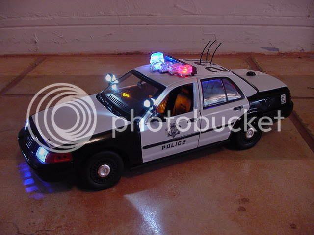 domestic violence police