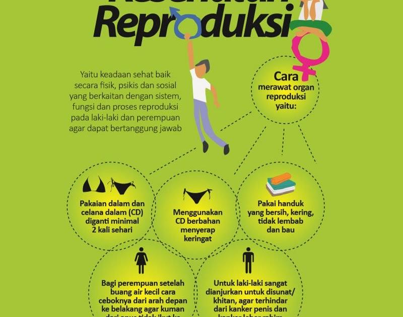 25 Trend Terbaru Poster Tentang Menjaga Kesehatan Reproduksi Pada Masa Pubertas Lemauvais Clown