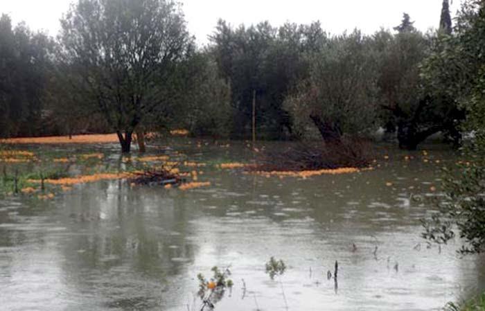 Άρτα: Ημερίδα ενημέρωσης για φυσικές καταστροφές από πλημμύρες