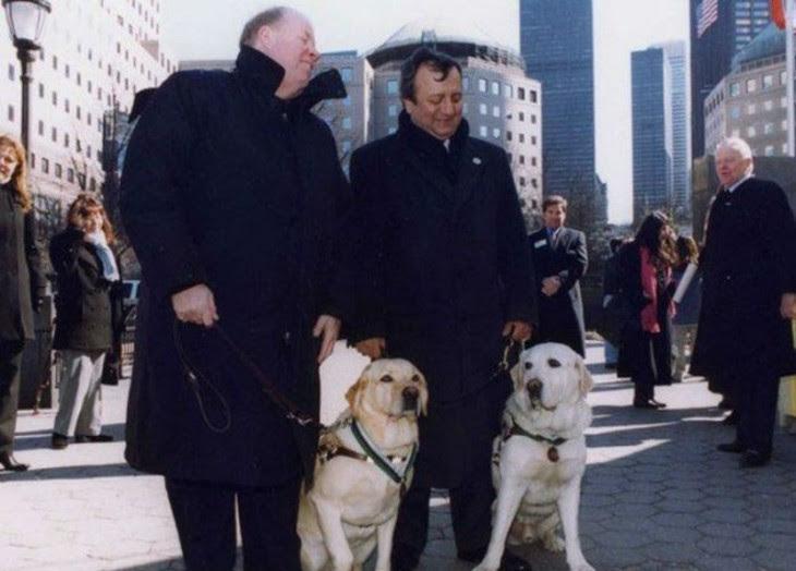 salty y roselle los lazarillos que salvaron a sus dueños del ataque 9/11