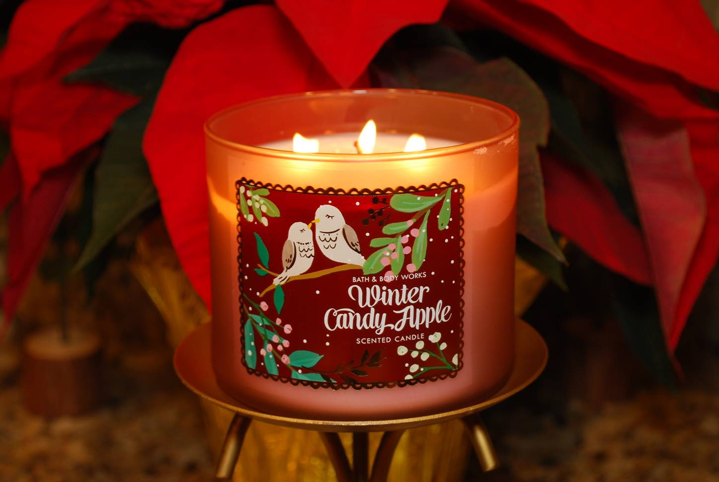 Bath & Body Works Winter Candy Apple Candle Reviews ...