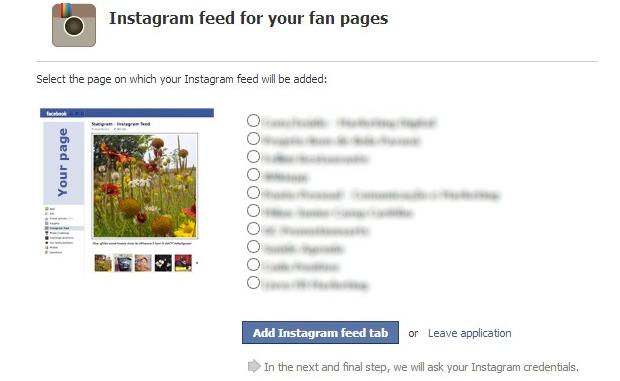 Escolha as páginas que deseja inserir o Instagram