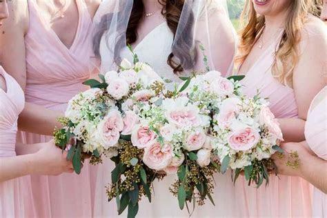 Bridal Blush Spray Rose