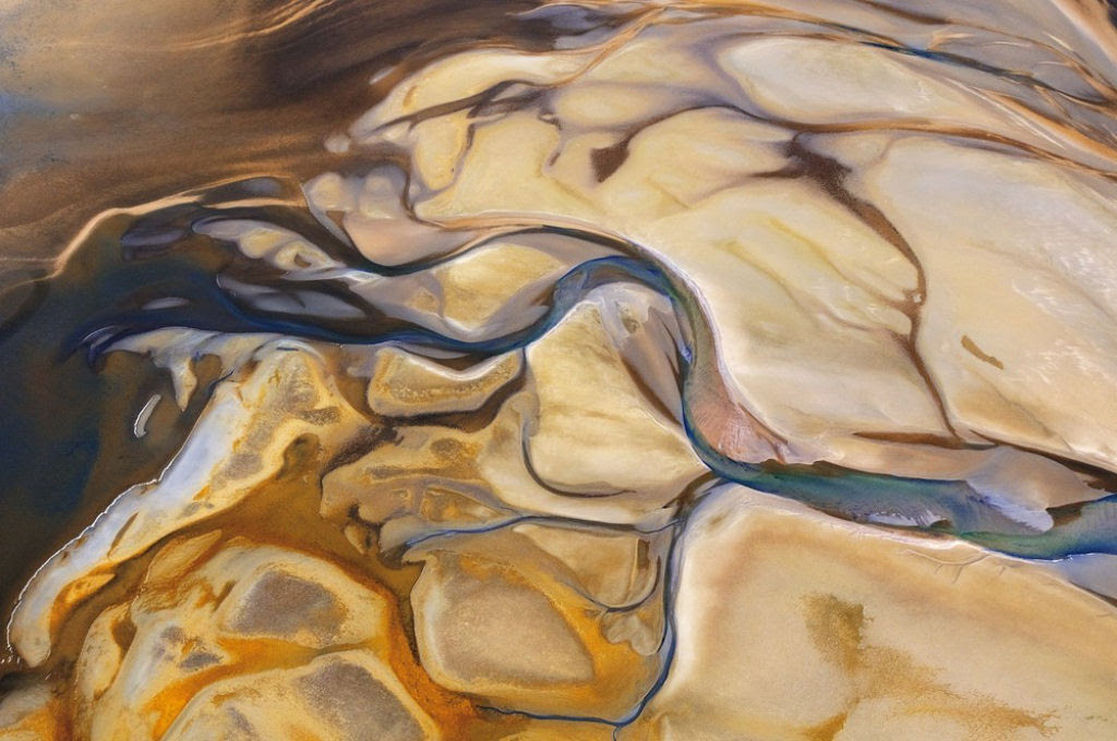 O lado colorido da África selvagem por Alex Bernasconi 03
