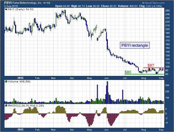1-year chart of Puma (NYSE: PBYI)