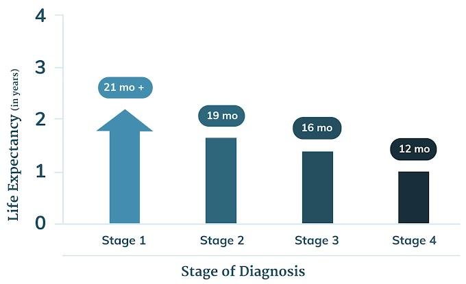 Mesothelioma Diagnosis Stories