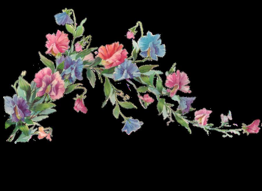 http://fc08.deviantart.net/fs71/i/2011/027/7/6/floral_branch_element_by_jinifur-d387ehv.png