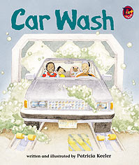 Car Wash Cover