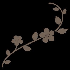 花飾り3 花植物イラスト Flode Illustration フロデイラスト