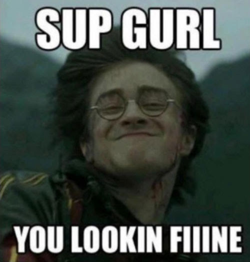 Harry Potter Memes 003 Sup Girl Lookin Fine Comics And Memes