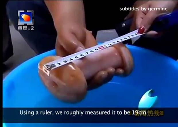 Programa de TV divulgou um pedido de desculpas após gafe. (Foto: Reprodução)