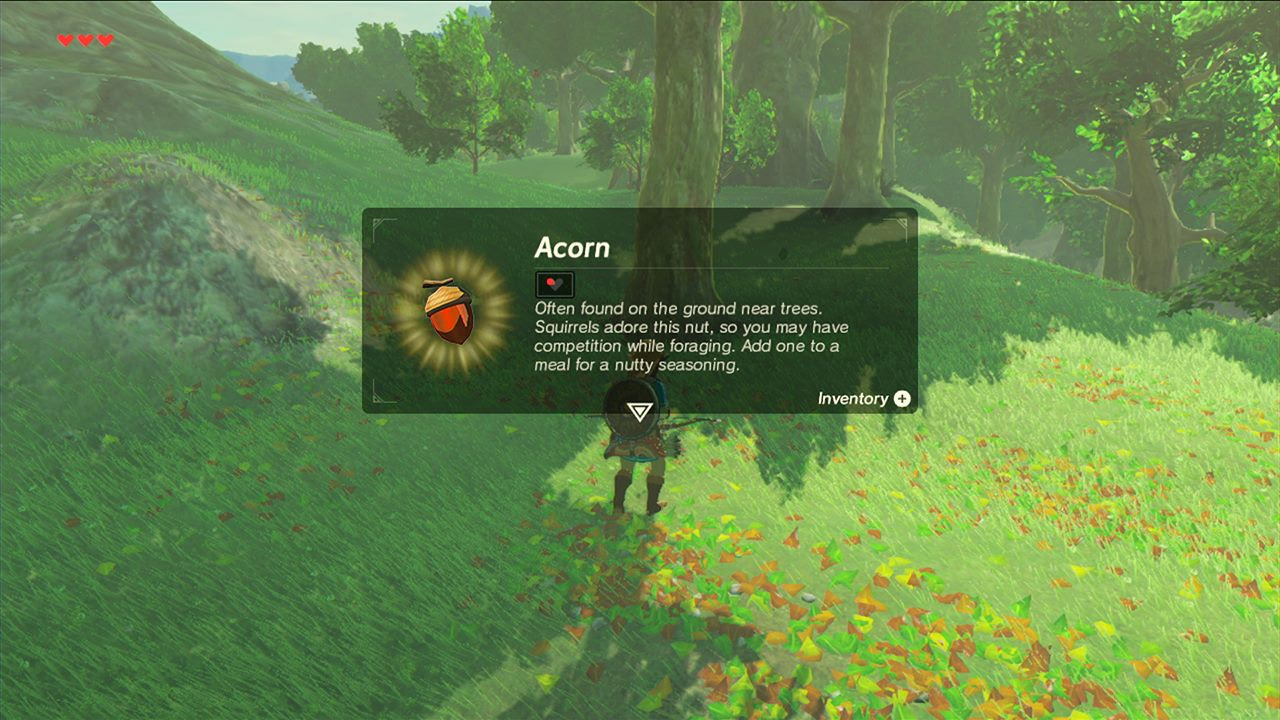 Zelda Breath of the Wild : quelques images