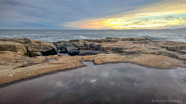 at the tip of the Schoodic Peninsula on a December afternoon