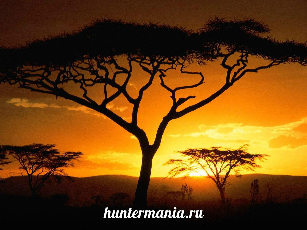 Танзания - пылкое сердце Африки