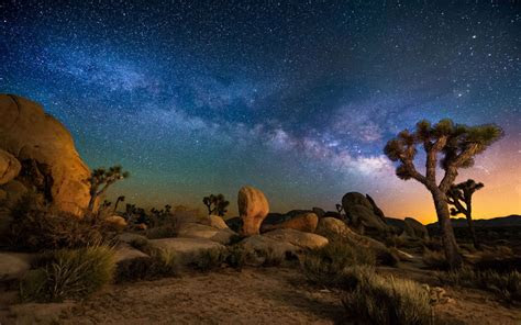 starry sky desert area night  joshua tree national park