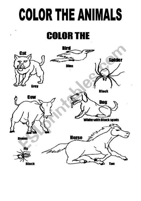 english worksheets animals coloring