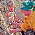 'Honeyland' offers heartbreaking life story and harrowing warning
