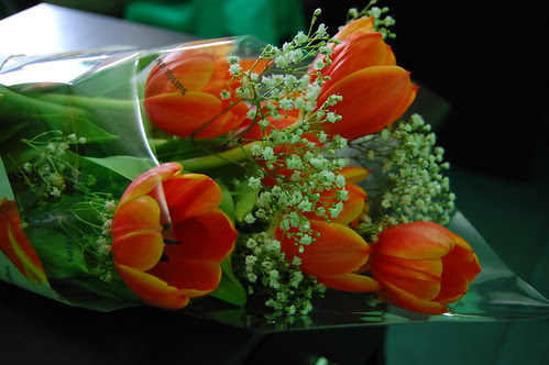 flowers from beib.. by you.