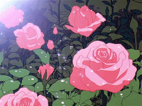shining rose plant animation  aesthetics  artwork